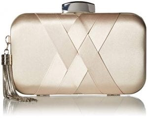 Read more about the article Jessica McClintock Women's Molly Satin Minaudiere, Champagne
